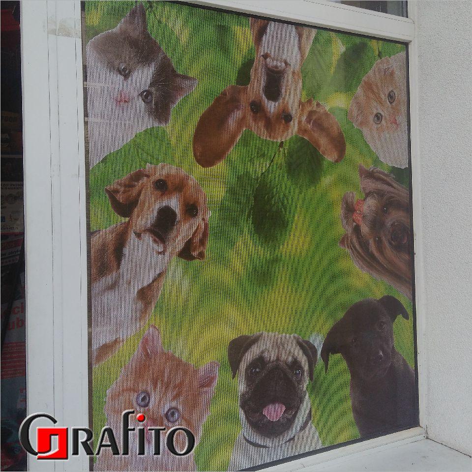 Okno oklejone folią OWV